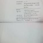 IMG_6982